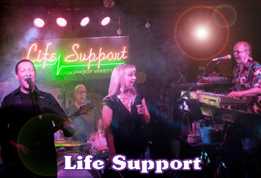 Live Bands - Life Support